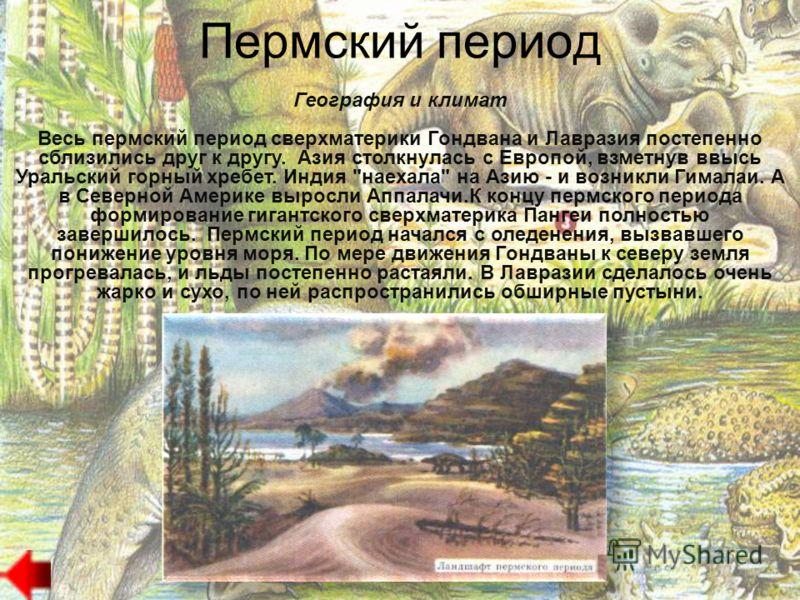 Пермский период Пермский период : ОТ 286 ДО 248 МЛН. ЛЕТ НАЗАД
