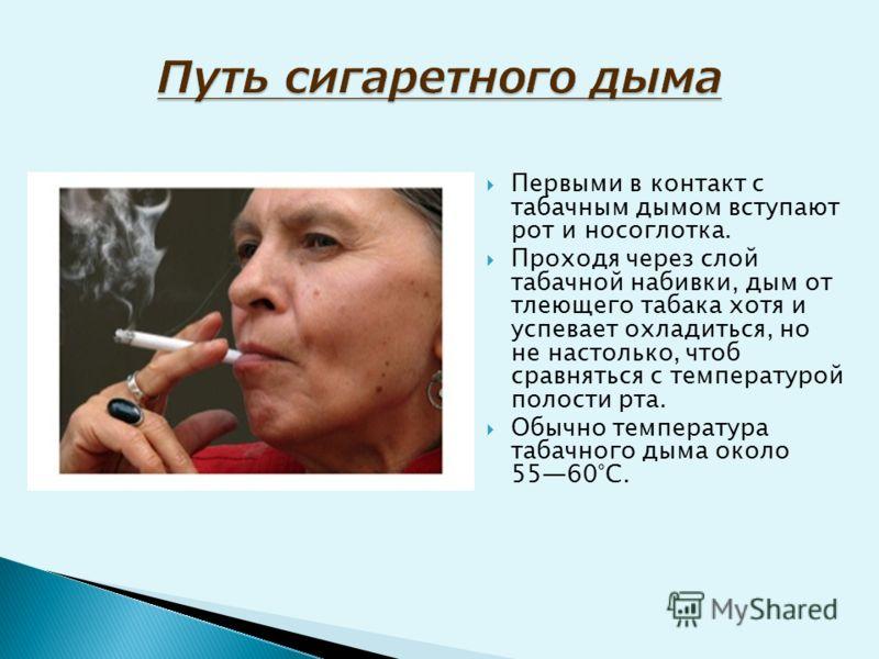 Первыми в контакт с табачным дымом вступают рот и носоглотка. Проходя через слой табачной набивки, дым от тлеющего табака хотя и успевает охладиться, но не настолько, чтоб сравняться с температурой полости рта. Обычно температура табачного дыма около