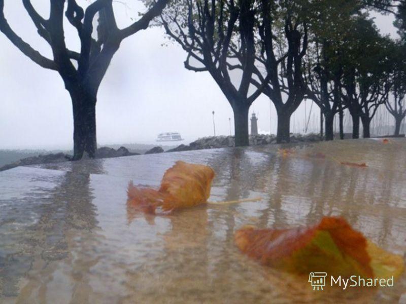 Часто идёт мелкий моросящий дождь.