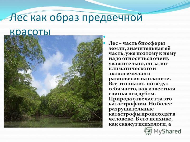 Лес как образ предвечной красоты Лес – часть биосферы земли, значительная её часть, уже поэтому к нему надо относиться очень уважительно, он залог климатического и экологического равновесия на планете. Все это знают, но ведут себя часто, как известна