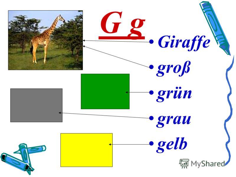 G g Giraffe groß grün grau gelb