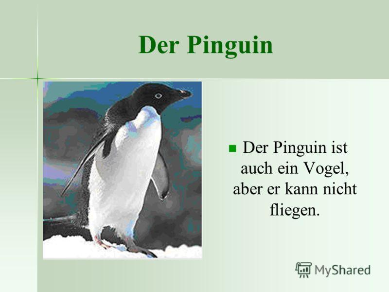 Der Pinguin Der Pinguin ist auch ein Vogel, aber er kann nicht fliegen.