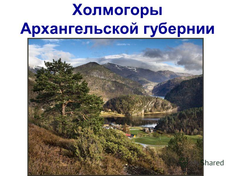 Холмогоры Архангельской губернии