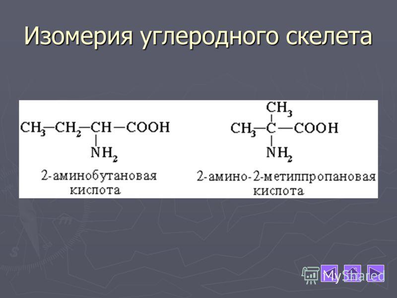 Изомерия углеродного скелета