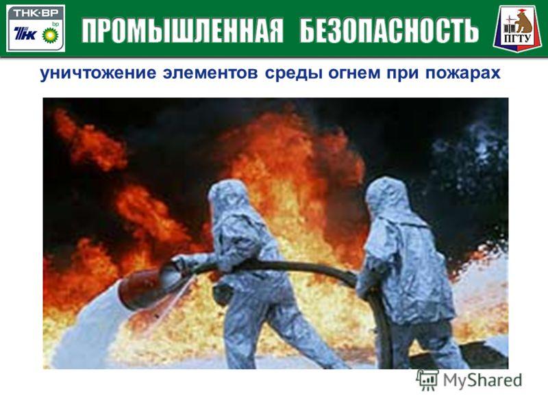 уничтожение элементов среды огнем при пожарах