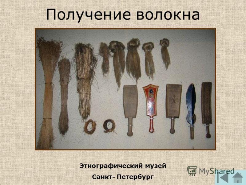 Получение волокна Этнографический музей Санкт-Петербург