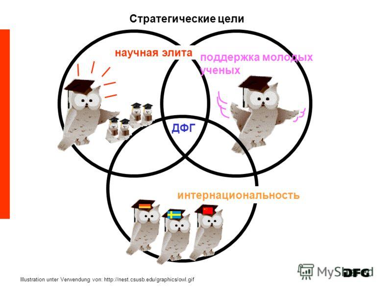 Стратегические цели Illustration unter Verwendung von: http://nest.csusb.edu/graphics/owl.gif научная элита поддержка молодых ученых ДФГ интернациональность