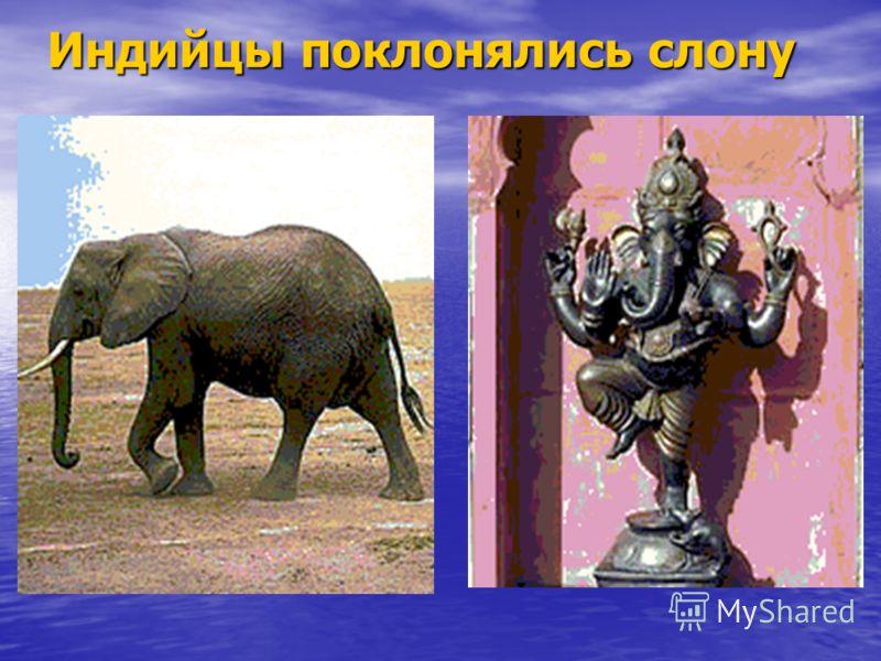 Индийцы поклонялись слону