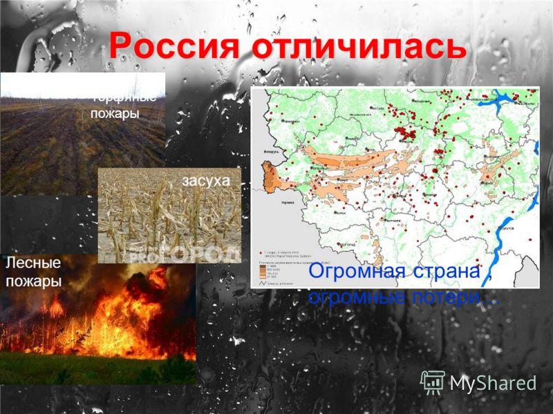 Россия отличилась Лесные пожары засуха Торфяные пожары Огромная страна, огромные потери…