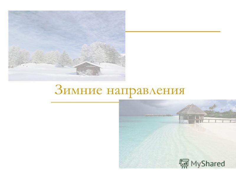 Зимние направления