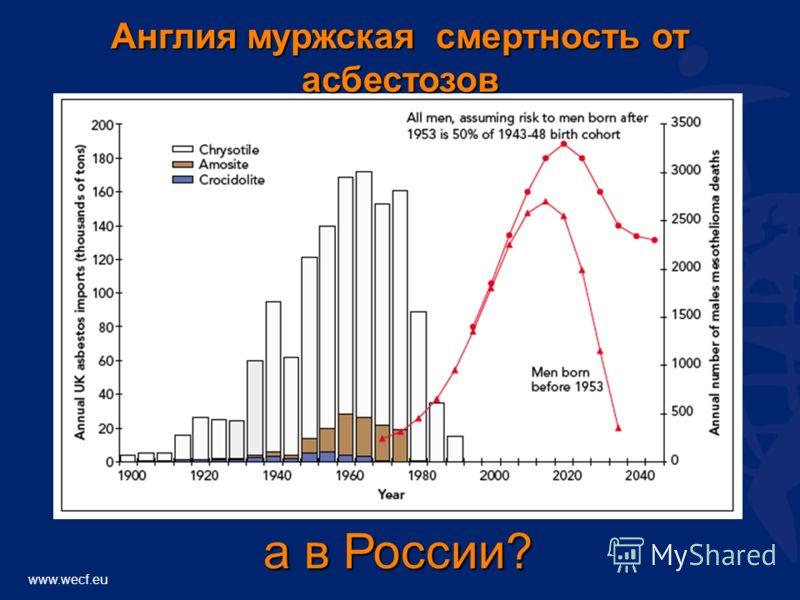 www.wecf.eu Англия муржская смертность от асбестозов а в России?