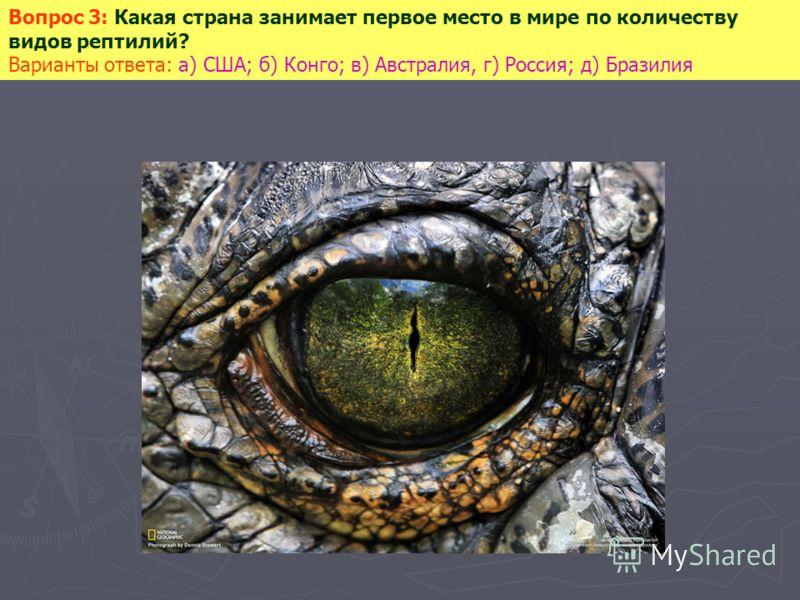 Вопрос 3: Какая страна занимает первое место в мире по количеству видов рептилий? Варианты ответа: а) США; б) Конго; в) Австралия, г) Россия; д) Бразилия