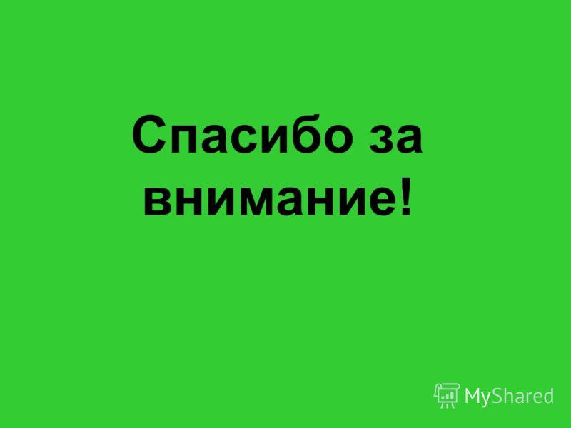 Куляшова И.П. 2007 г Спасибо за внимание!