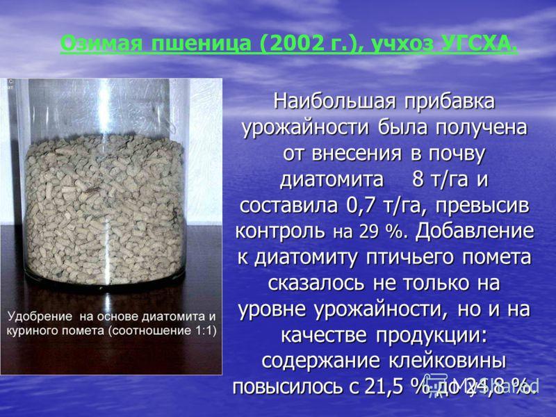Наибольшая прибавка урожайности была получена от внесения в почву диатомита 8 т/га и составила 0,7 т/га, превысив контроль на 29 %. Добавление к диатомиту птичьего помета сказалось не только на уровне урожайности, но и на качестве продукции: содержан