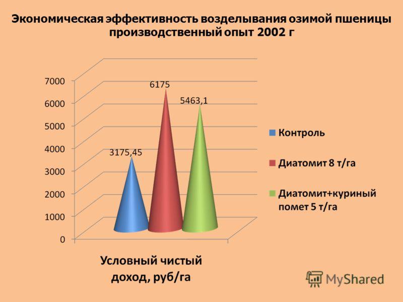 Экономическая эффективность возделывания озимой пшеницы производственный опыт 2002 г