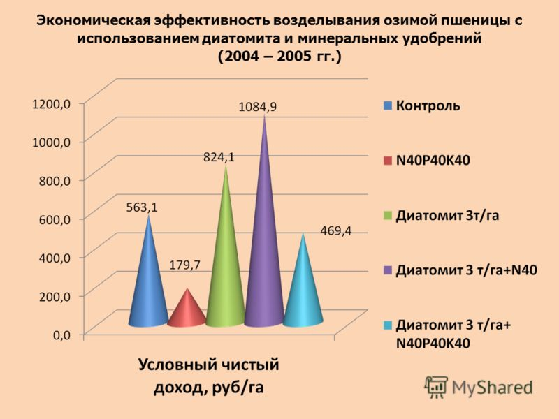 Экономическая эффективность возделывания озимой пшеницы с использованием диатомита и минеральных удобрений (2004 – 2005 гг.)