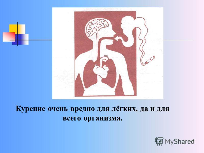 Курение очень вредно для лёгких, да и для всего организма.