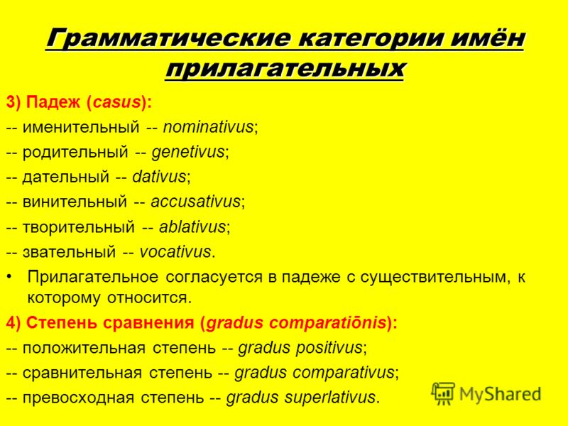 Грамматические категории имён прилагательных 3) Падеж (casus): -- именительный -- nominativus; -- родительный -- genetivus; -- дательный -- dativus; -- винительный -- accusativus; -- творительный -- ablativus; -- звательный -- vocativus. Прилагательн