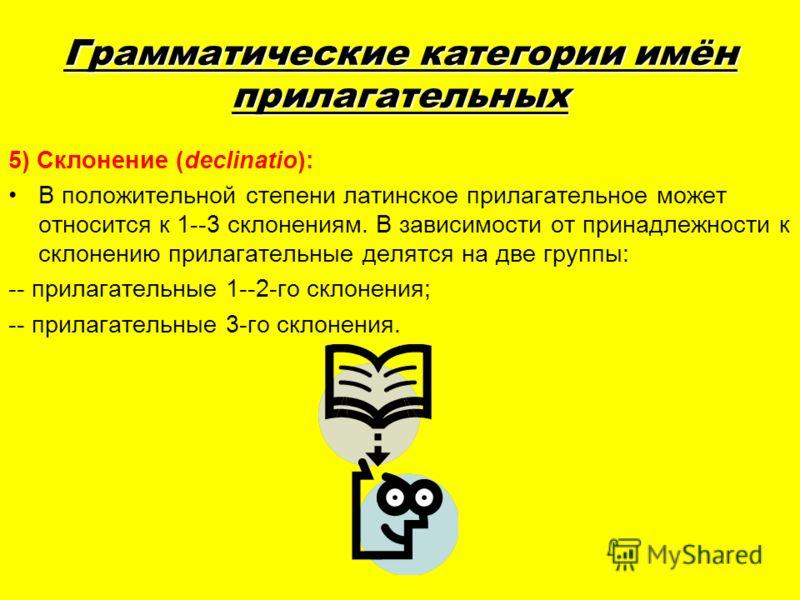 Грамматические категории имён прилагательных 5) Склонение (declinatio): В положительной степени латинское прилагательное может относится к 1--3 склонениям. В зависимости от принадлежности к склонению прилагательные делятся на две группы: -- прилагате