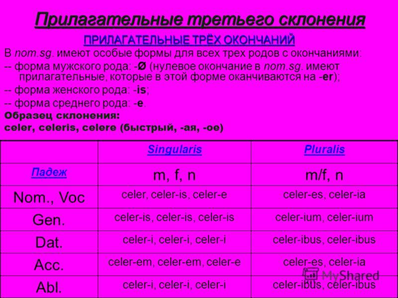Прилагательные третьего склонения ПРИЛАГАТЕЛЬНЫЕ ТРЁХ ОКОНЧАНИЙ В nom.sg. имеют особые формы для всех трех родов с окончаниями: -- форма мужского рода: -Ø (нулевое окончание в nom.sg. имеют прилагательные, которые в этой форме оканчиваются на -er); -