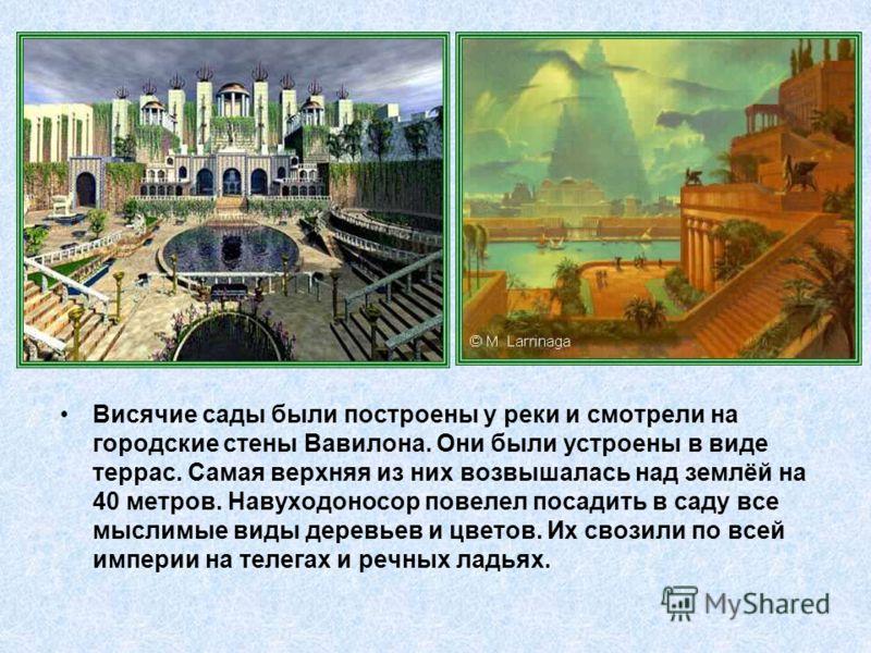 Висячие сады были построены у реки и смотрели на городские стены Вавилона. Они были устроены в виде террас. Самая верхняя из них возвышалась над землёй на 40 метров. Навуходоносор повелел посадить в саду все мыслимые виды деревьев и цветов. Их свозил