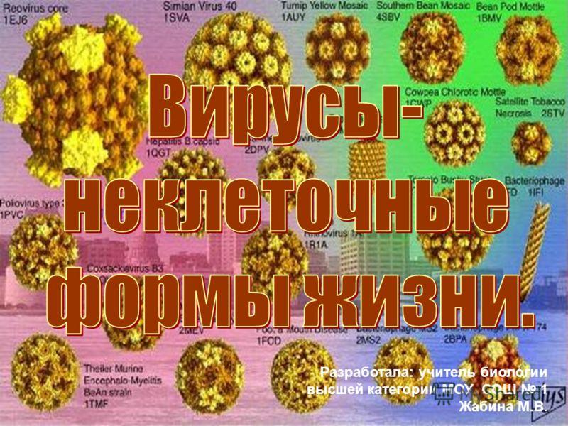 Разработала: учитель биологии высшей категории МОУ СОШ 1 Жабина М.В.