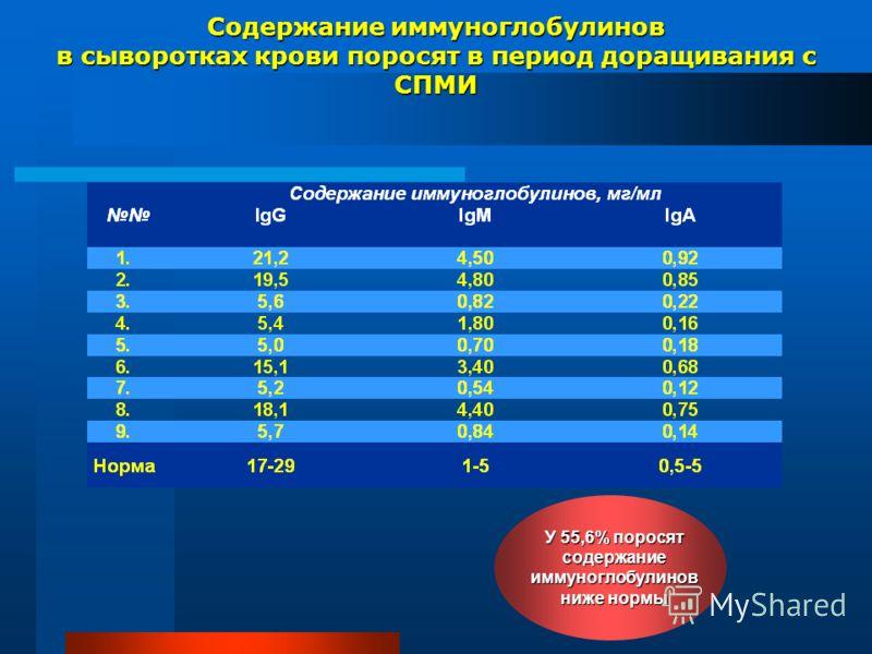 Содержание иммуноглобулинов в сыворотках крови поросят в период доращивания с СПМИ У 55,6% поросят содержание иммуноглобулинов ниже нормы