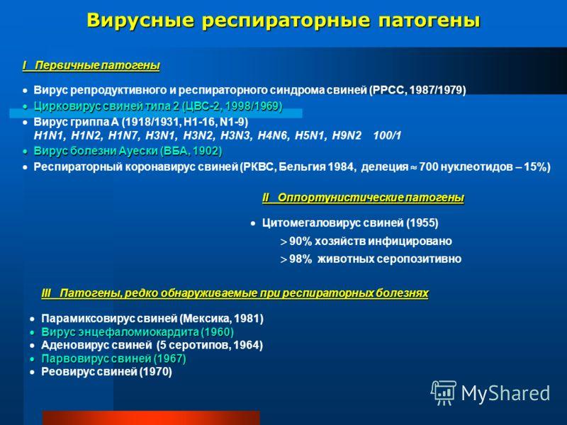 Вирусные респираторные патогены I Первичные патогены Вирус репродуктивного и респираторного синдрома свиней (РРСС, 1987/1979) Цирковирус свиней типа 2 (ЦВС-2, 1998/1969) Цирковирус свиней типа 2 (ЦВС-2, 1998/1969) Вирус гриппа А (1918/1931, Н1-16, N1