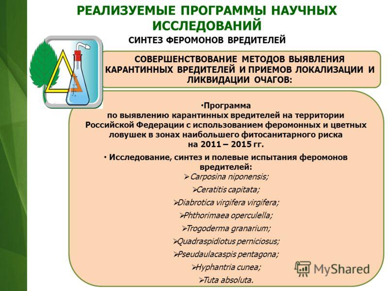 Программа по выявлению карантинных вредителей на территории Российской Федерации с использованием феромонных и цветных ловушек в зонах наибольшего фитосанитарного риска на 2011 – 2015 гг. Исследование, синтез и полевые испытания феромонов вредителей: