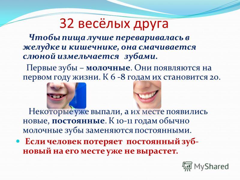 32 весёлых друга Чтобы пища лучше переваривалась в желудке и кишечнике, она смачивается слюной измельчается зубами. Первые зубы – молочные. Они появляются на первом году жизни. К 6 -8 годам их становится 20. Некоторые уже выпали, а их месте появились