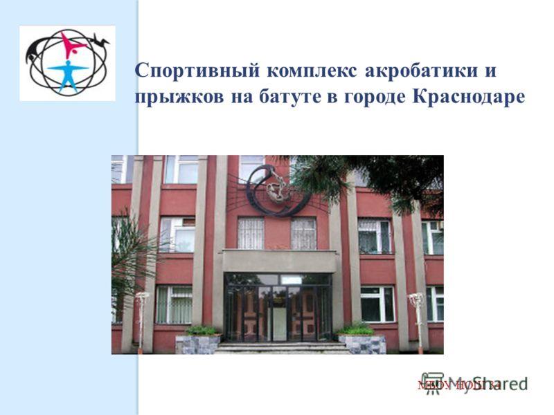 МБОУ НОШ 34 Спортивный комплекс акробатики и прыжков на батуте в городе Краснодаре