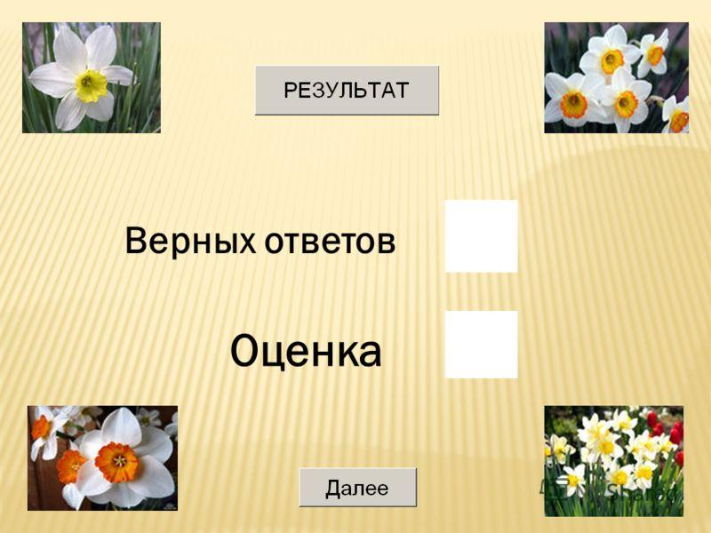 8 Значение выражения 10 16 + 10 8 10 2 в двоичной системе счисления равно Выберите ответ