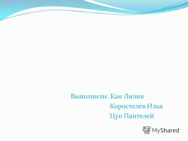 Выполнили: Кан Лилия Коростелев Илья Цуп Пантелей