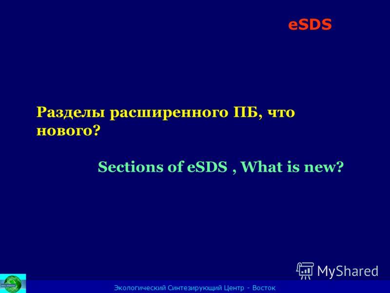 23.04.2008 Экологический Синтезирующий Центр - Восток Разделы расширенного ПБ, что нового? Sections of eSDS, What is new? eSDS