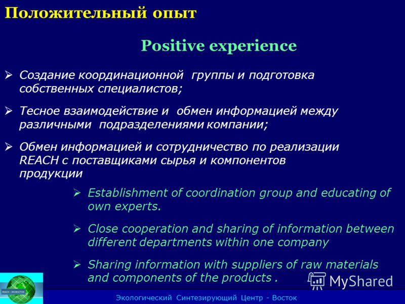 Экологический Синтезирующий Центр - Восток Положительный опыт Positive experience Создание координационной группы и подготовка собственных специалистов; Тесное взаимодействие и обмен информацией между различными подразделениями компании; Обмен информ