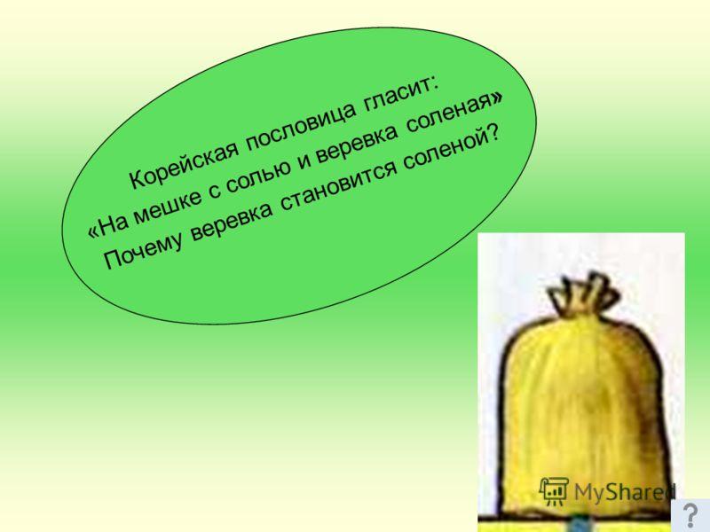 Корейская пословица гласит: «На мешке с солью и веревка соленая» Почему веревка становится соленой?