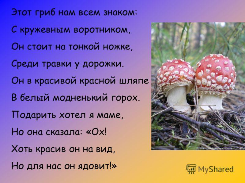 Этот гриб нам всем знаком: С кружевным воротником, Он стоит на тонкой ножке, Среди травки у дорожки. Он в красивой красной шляпе В белый модненький горох. Подарить хотел я маме, Но она сказала: «Ох! Хоть красив он на вид, Но для нас он ядовит!»