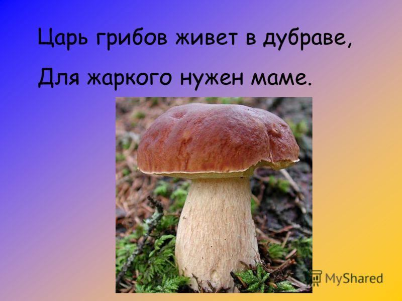 Царь грибов живет в дубраве, Для жаркого нужен маме.