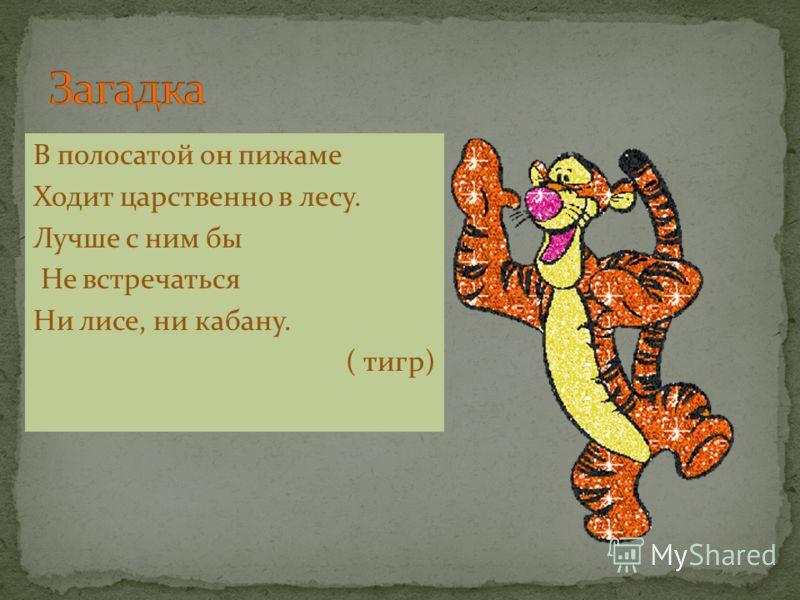 В полосатой он пижаме Ходит царственно в лесу. Лучше с ним бы Не встречаться Ни лисе, ни кабану. ( тигр)