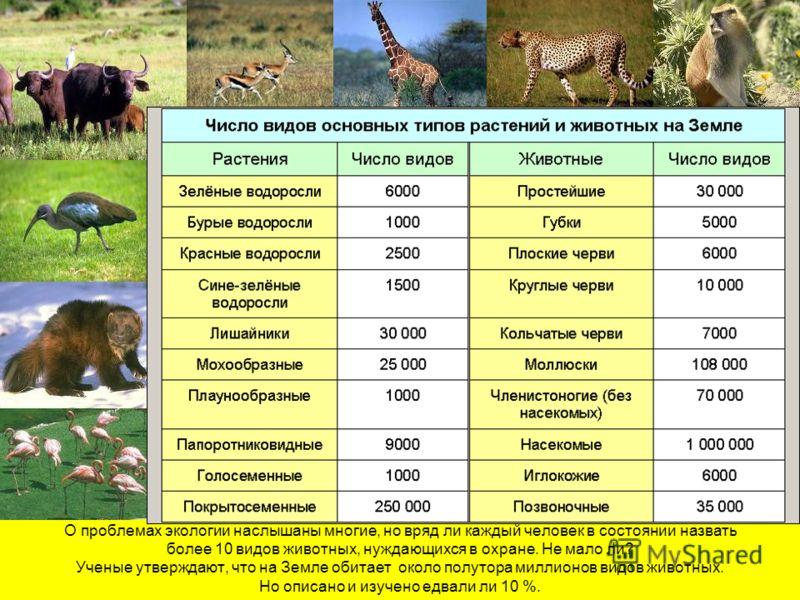 О проблемах экологии наслышаны многие, но вряд ли каждый человек в состоянии назвать более 10 видов животных, нуждающихся в охране. Не мало ли? Ученые утверждают, что на Земле обитает около полутора миллионов видов животных. Но описано и изучено едва