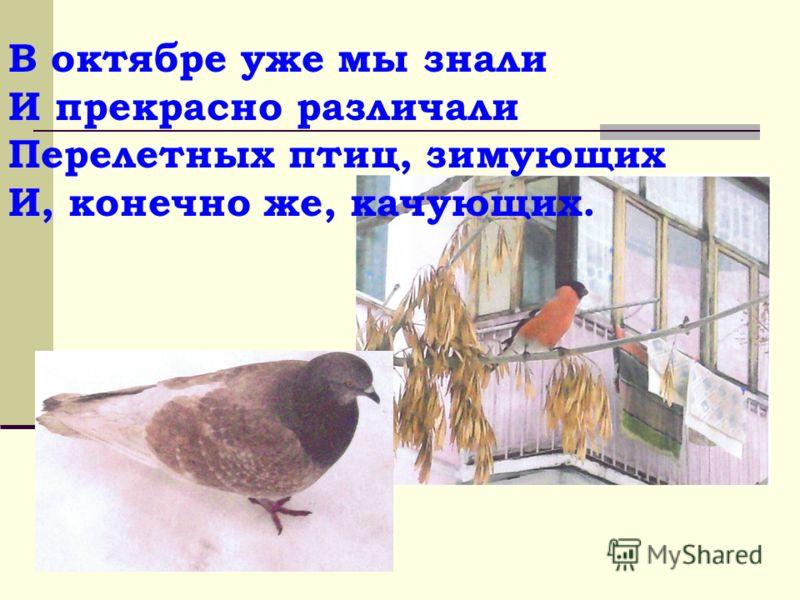 В октябре уже мы знали И прекрасно различали Перелетных птиц, зимующих И, конечно же, качующих.