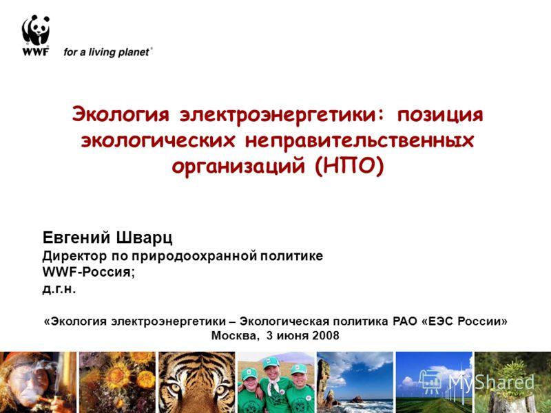 Экология электроэнергетики: позиция экологических неправительственных организаций (НПО) Евгений Шварц Директор по природоохранной политике WWF-Россия; д.г.н. «Экология электроэнергетики – Экологическая политика РАО «ЕЭС России» Москва, 3 июня 2008