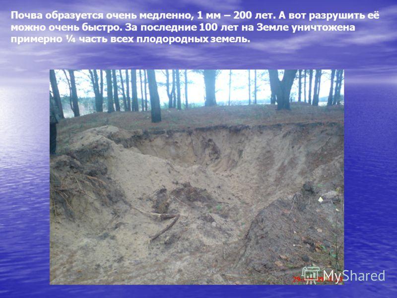 Почва образуется очень медленно, 1 мм – 200 лет. А вот разрушить её можно очень быстро. За последние 100 лет на Земле уничтожена примерно ¼ часть всех плодородных земель.