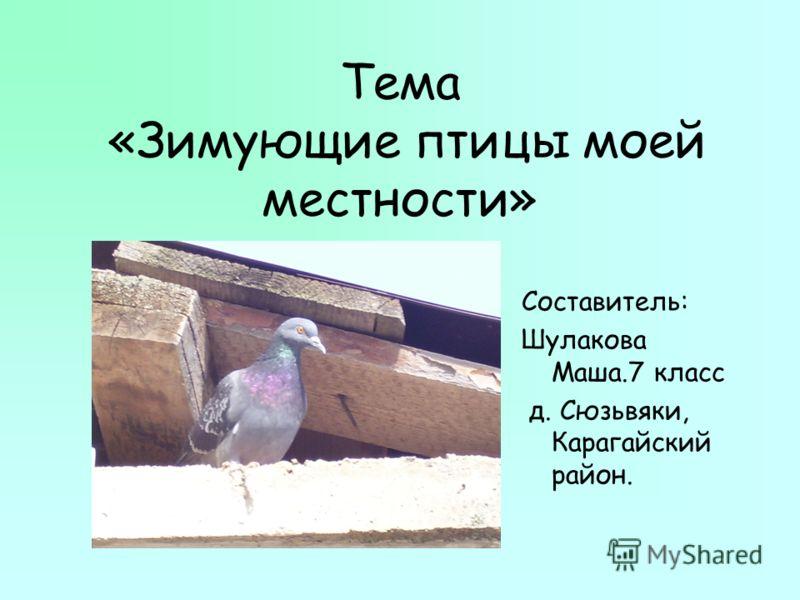 Тема «Зимующие птицы моей местности» Составитель: Шулакова Маша.7 класс д. Сюзьвяки, Карагайский район.