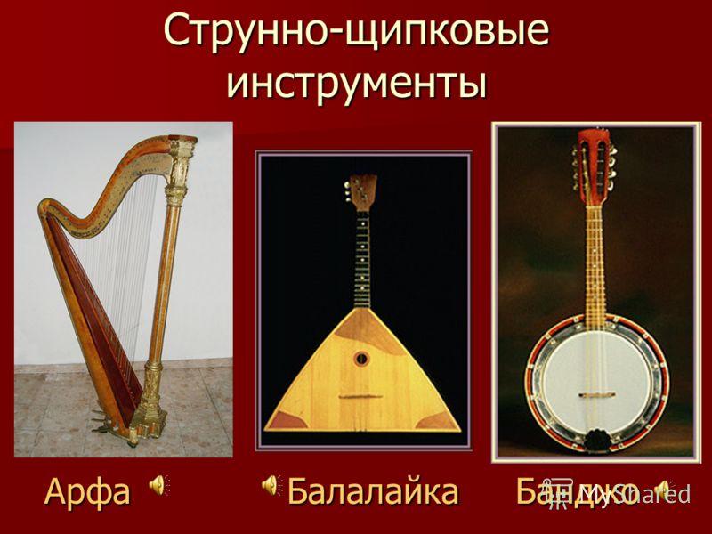 Струнно-смычковые инструменты Скрипка Виолончель Контрабас