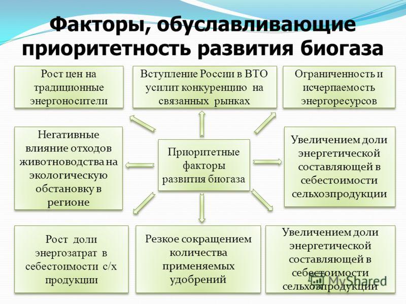 Факторы, обуславливающие приоритетность развития биогаза Приоритетные факторы развития биогаза Рост цен на традиционные энергоносители Вступление России в ВТО усилит конкуренцию на связанных рынках Ограниченность и исчерпаемость энергоресурсов Негати