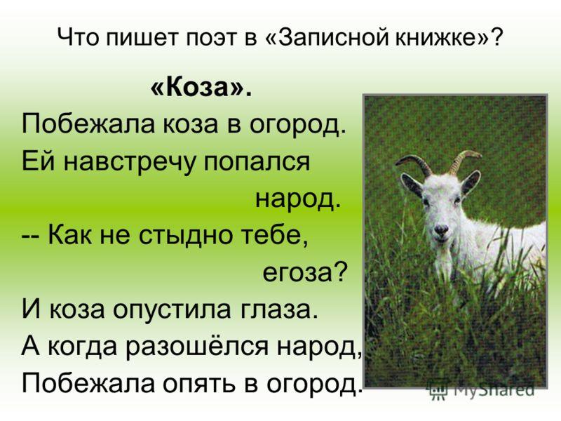 Что пишет поэт в «Записной книжке»? «Коза». Побежала коза в огород. Ей навстречу попался народ. -- Как не стыдно тебе, егоза? И коза опустила глаза. А когда разошёлся народ, Побежала опять в огород.
