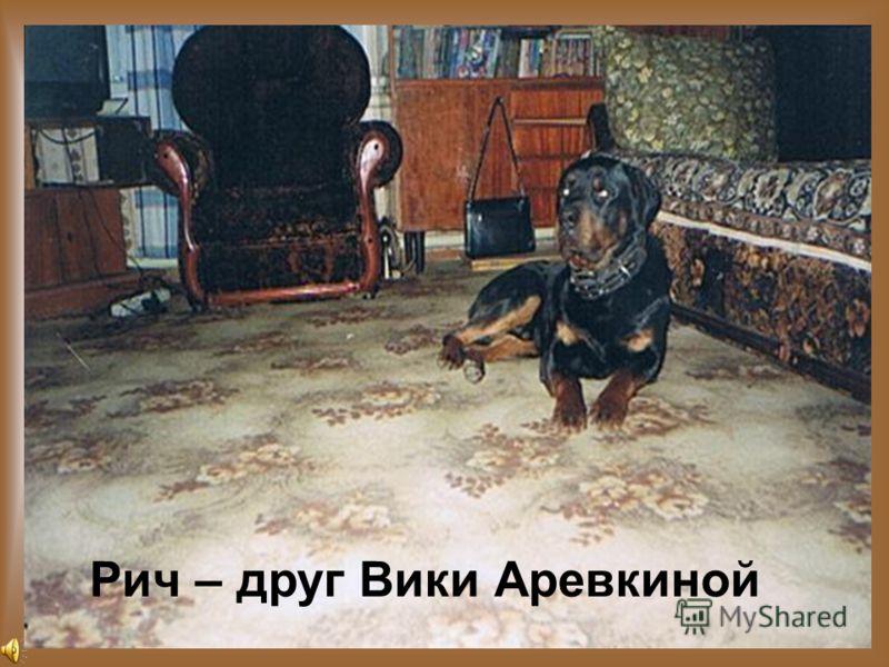 Рич – друг Вики Аревкиной