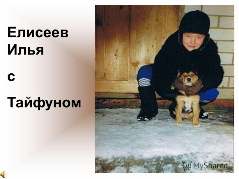 Елисеев Илья с Тайфуном