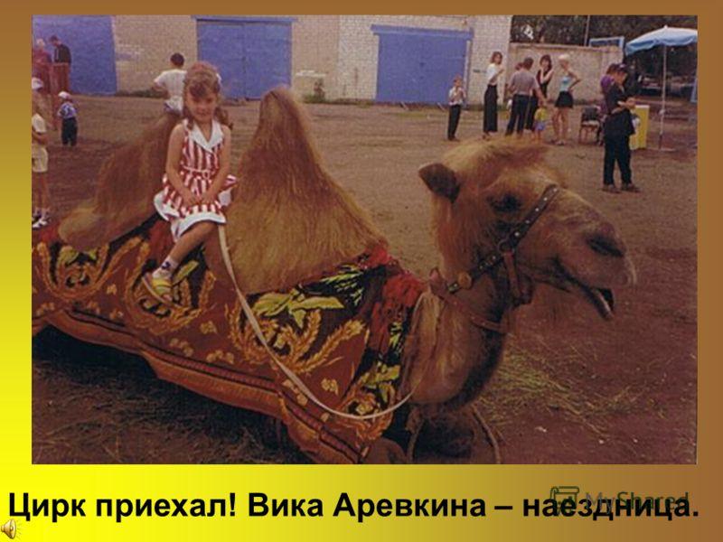 Цирк приехал! Вика Аревкина – наездница.